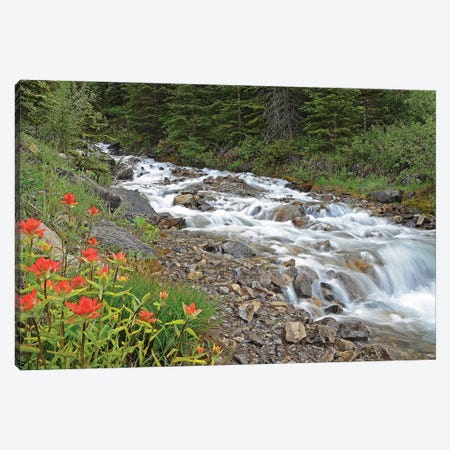 Paintbrush and Stream Canvas Print #BWF236} by Brian Wolf Canvas Artwork