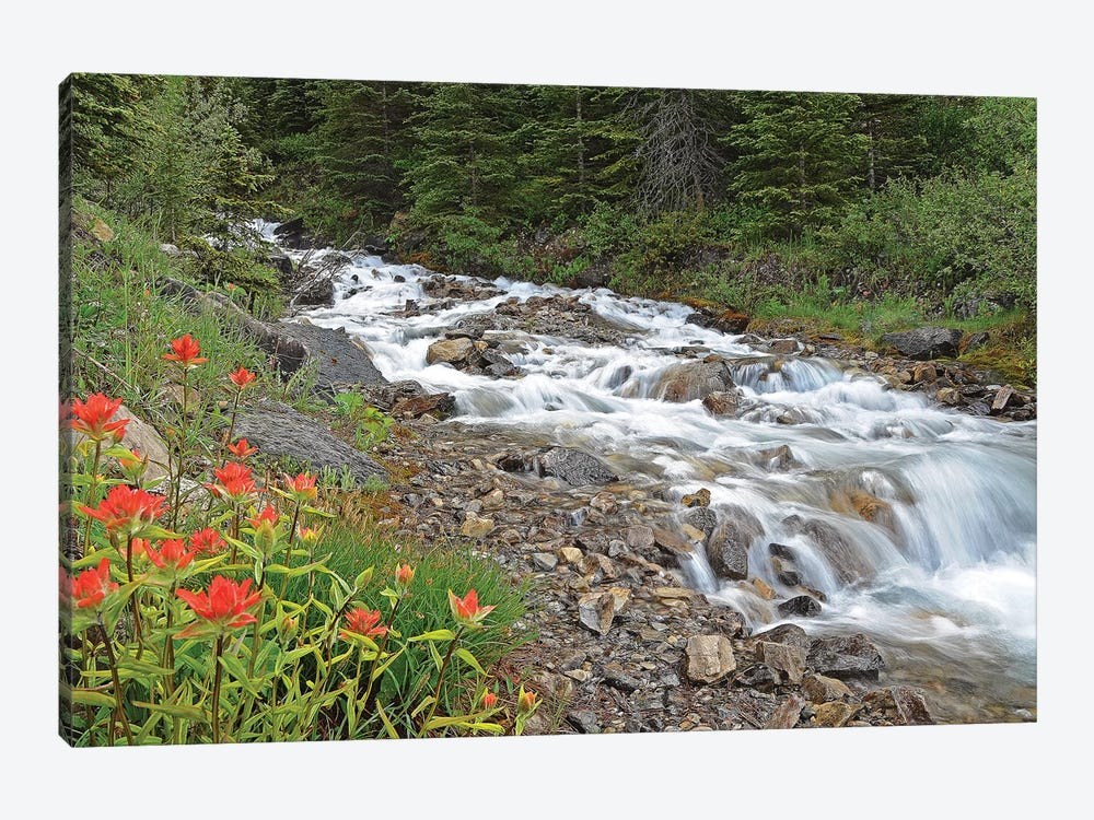 Paintbrush and Stream by Brian Wolf 1-piece Canvas Art Print