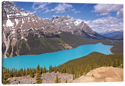 Peyto Lake  Canvas Art Print