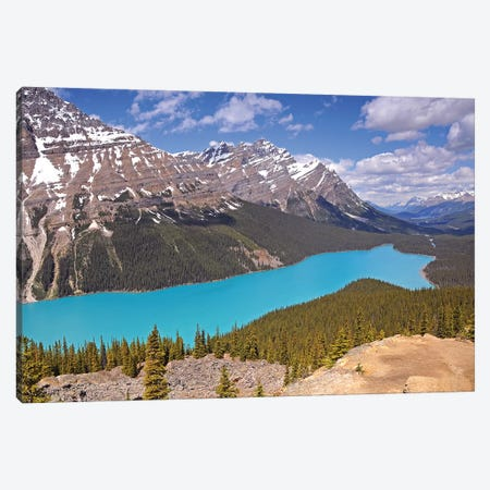 Peyto Lake  Canvas Print #BWF244} by Brian Wolf Canvas Print