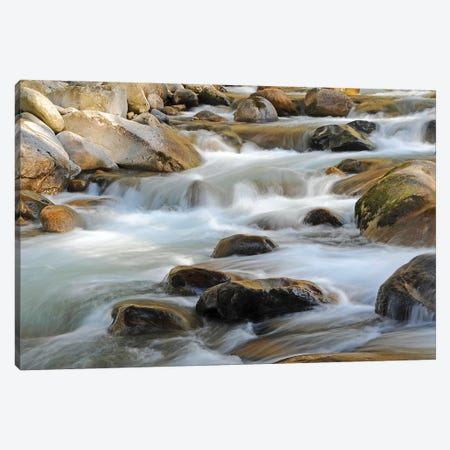Rapids Canvas Print #BWF254} by Brian Wolf Canvas Wall Art