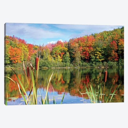 Autumn Lake Canvas Print #BWF25} by Brian Wolf Canvas Art