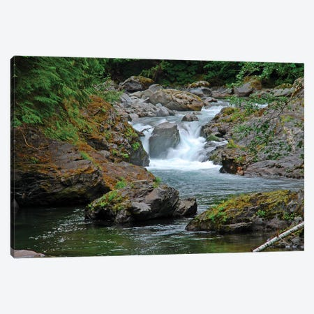 Salmon Cascades Canvas Print #BWF271} by Brian Wolf Canvas Art Print