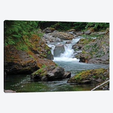 Salmon Cascades Canvas Print #BWF271} by Brian Wolf Canvas Art Print