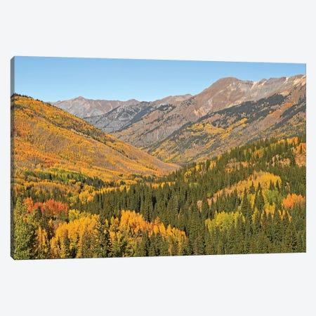 San Juan Mountains Canvas Print #BWF275} by Brian Wolf Canvas Artwork