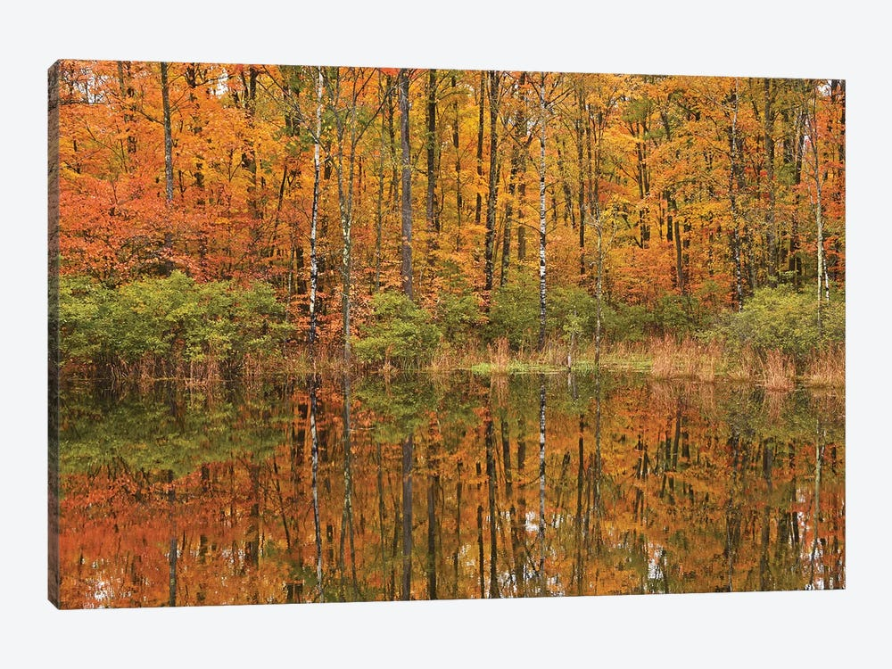 Autumn Pond Reflections by Brian Wolf 1-piece Canvas Art Print
