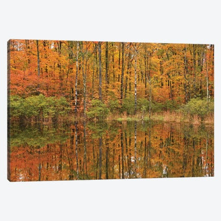 Autumn Pond Reflections Canvas Print #BWF27} by Brian Wolf Canvas Wall Art