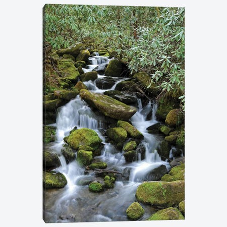 Smokey Mountain Waterfall Canvas Print #BWF290} by Brian Wolf Canvas Print