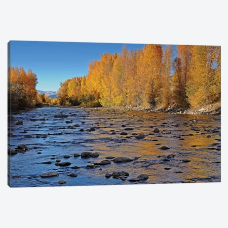 Autumn River Canvas Print #BWF29} by Brian Wolf Canvas Art Print