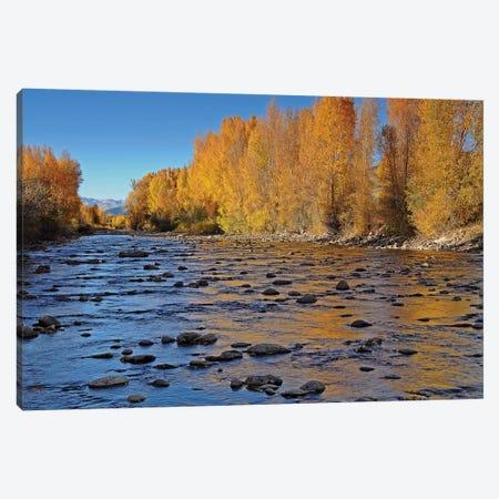 Autumn River Canvas Print #BWF29} by Brian Wolf Canvas Art Print