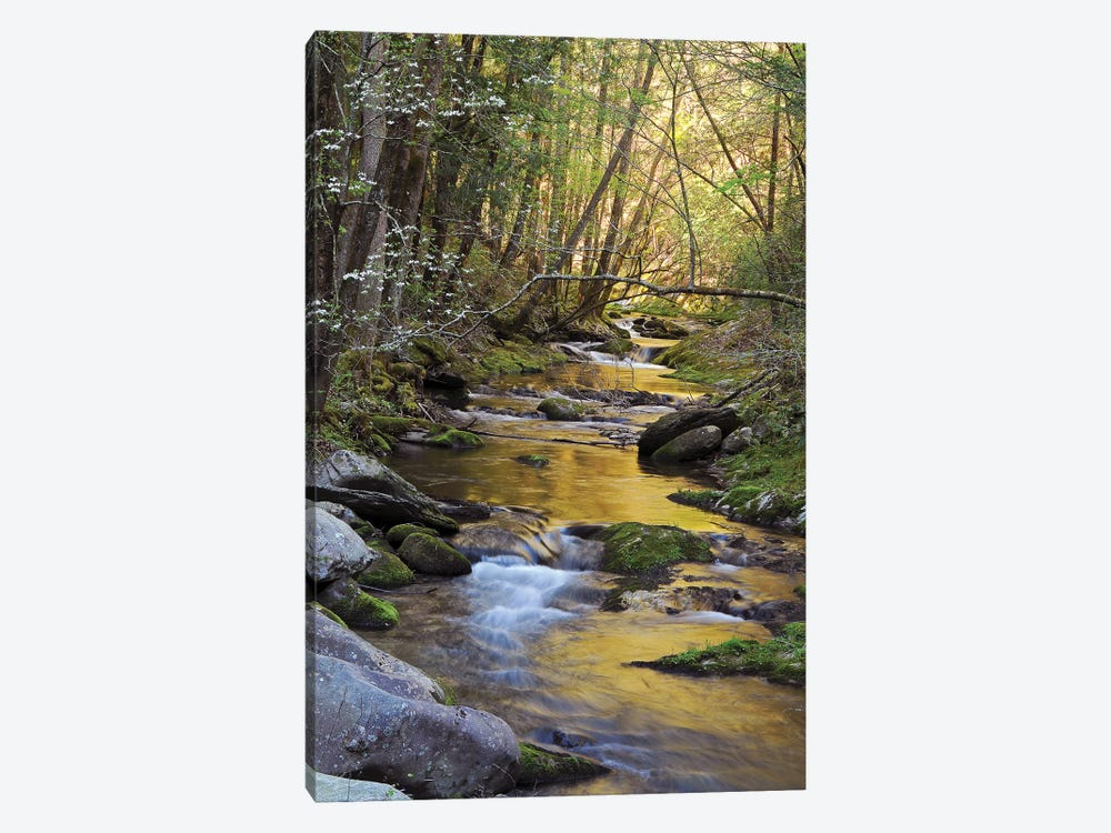 Springtime Creek by Brian Wolf 1-piece Art Print