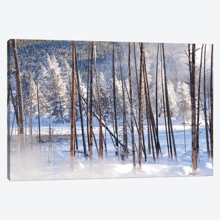 Steamy View Canvas Print #BWF309} by Brian Wolf Art Print