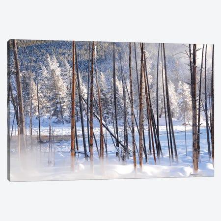 Steamy View 3-Piece Canvas #BWF309} by Brian Wolf Art Print