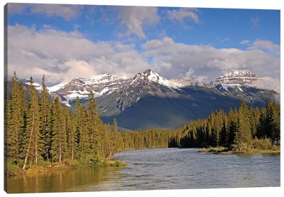 The Canadian Rockies Canvas Art Print