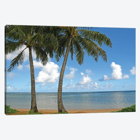Tropical Paradise Canvas Print #BWF352} by Brian Wolf Canvas Wall Art