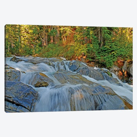 Waterfalls at Mount Rainier Canvas Print #BWF367} by Brian Wolf Canvas Artwork
