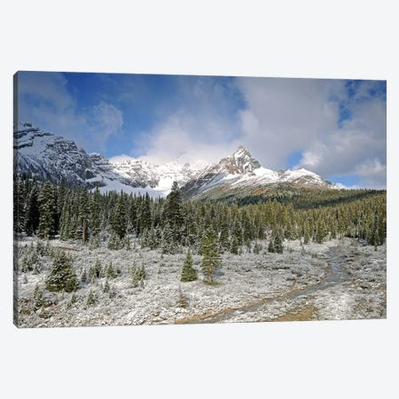 Wilcox Pass Canvas Print #BWF372} by Brian Wolf Canvas Wall Art