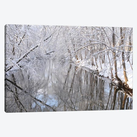 Winter River Canvas Print #BWF379} by Brian Wolf Canvas Art