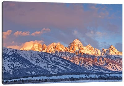 Winter Sunrise On The Tetons Canvas Art Print