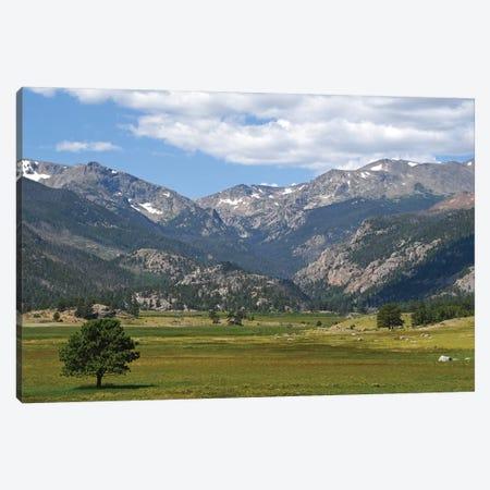 Mountain Meadow Canvas Print #BWF394} by Brian Wolf Art Print