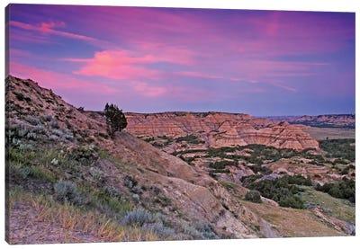 Badlands Sunset Canvas Art Print