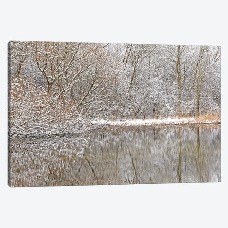 Springtime Snow Pond Reflections Canvas Print #BWF431} by Brian Wolf Canvas Print