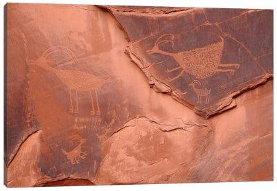 Anasazi Petroglyphs Canvas Art Print