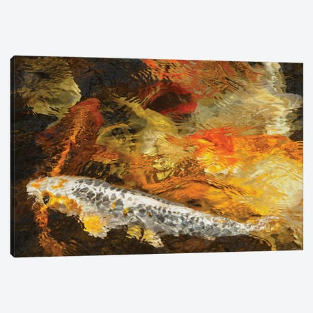 Koi Colors - Abstract Canvas Print #BWF440} by Brian Wolf Canvas Art