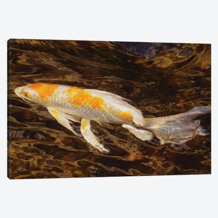 Swimming Along Canvas Print #BWF519} by Brian Wolf Canvas Art