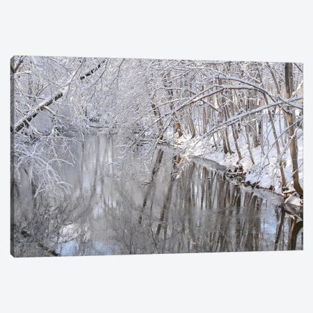 Winter River Reflections Canvas Print #BWF544} by Brian Wolf Canvas Wall Art