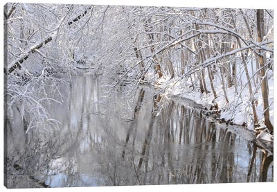 Winter River Reflections Canvas Art Print