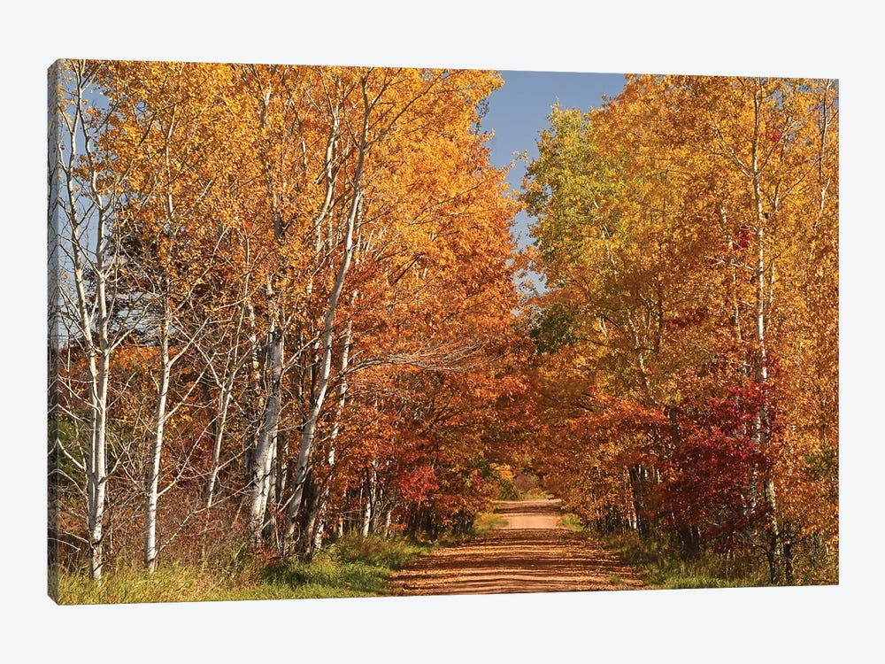 Country Road by Brian Wolf 1-piece Art Print