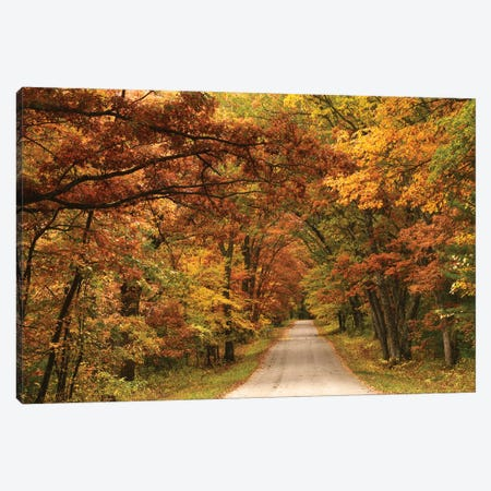 Back Road In Autumn Canvas Print #BWF565} by Brian Wolf Canvas Artwork