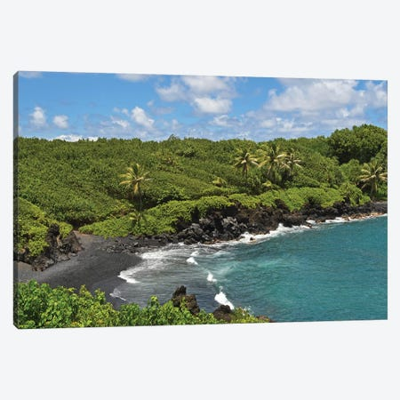 Black Sand Beach Canvas Print #BWF57} by Brian Wolf Canvas Print