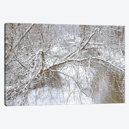 Fresh Snow On The Pike River Canvas Print #BWF587} by Brian Wolf Canvas Wall Art