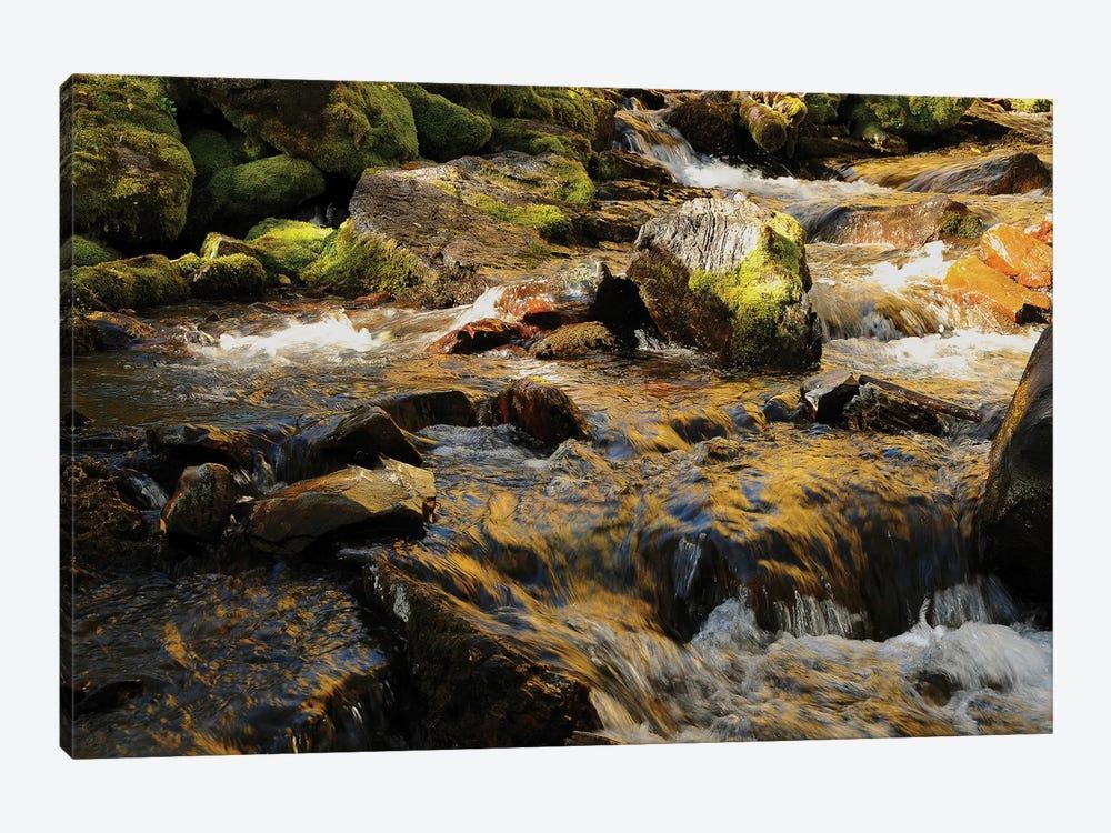 Cascades At- Maroon Bells by Brian Wolf 1-piece Canvas Wall Art