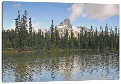 Cathedral Mountain Canvas Art Print