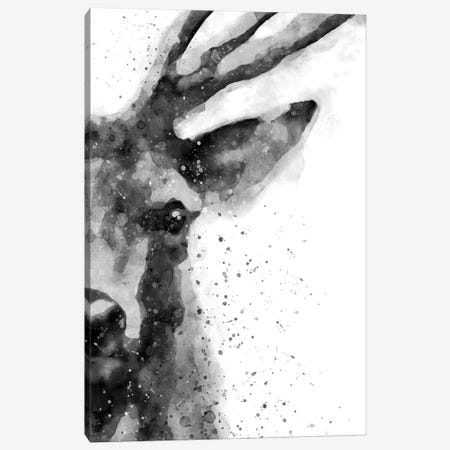 Deer At Attention Canvas Print #BWO5} by Brandon Wong Canvas Print