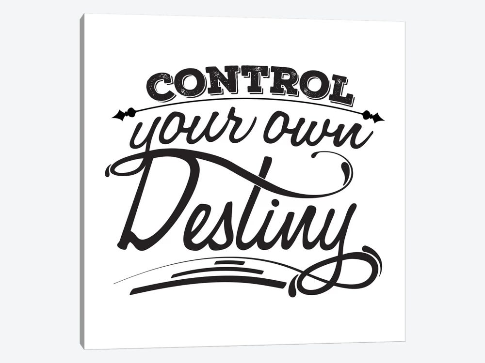 Control Your Destiny I by 5by5collective 1-piece Canvas Wall Art