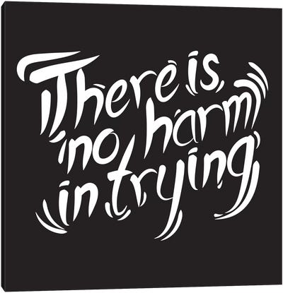 No Harm In Trying I Canvas Art Print