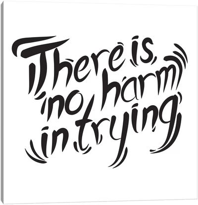 No Harm In Trying II Canvas Art Print