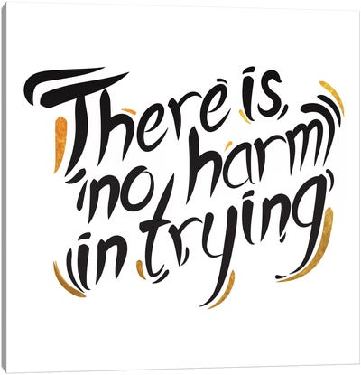 No Harm In Trying III Canvas Art Print