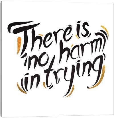 No Harm In Trying III Canvas Art Print