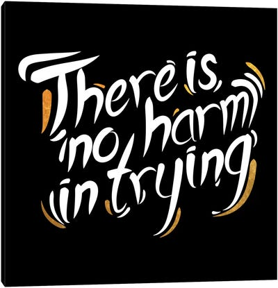 No Harm In Trying IV Canvas Art Print