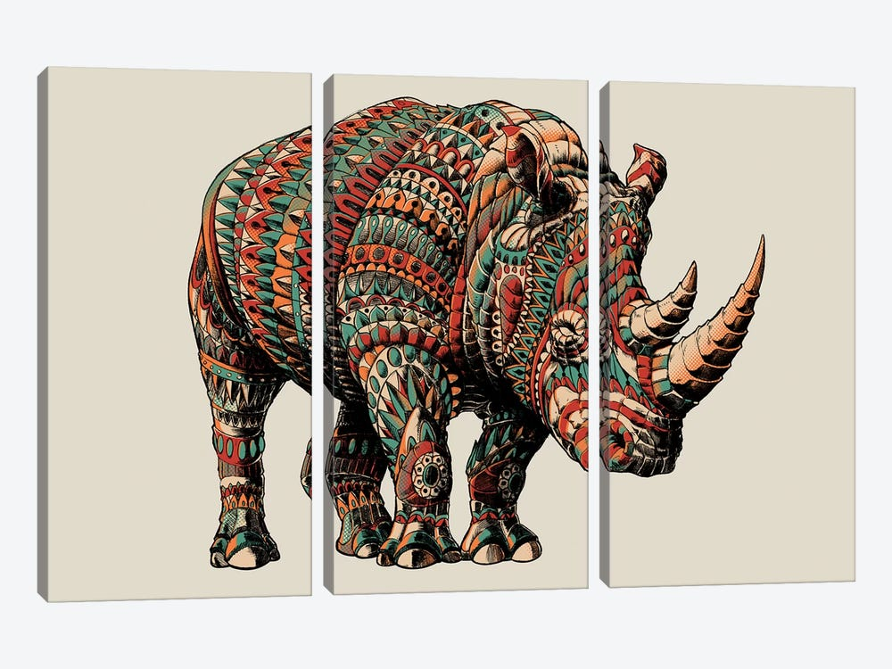 Rhino In Color I by Bioworkz 3-piece Canvas Wall Art
