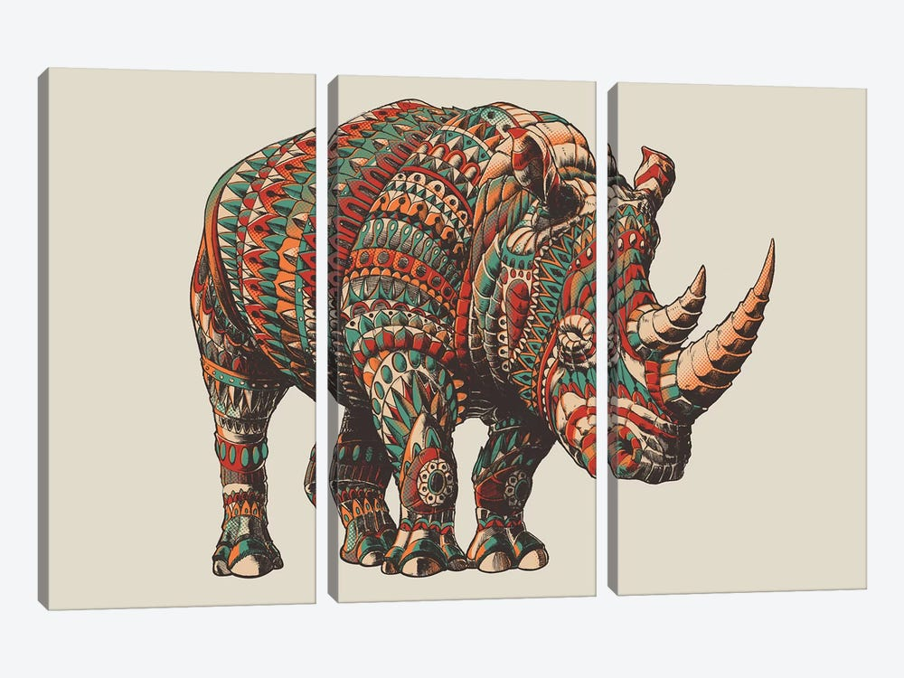 Rhino In Color II 3-piece Art Print
