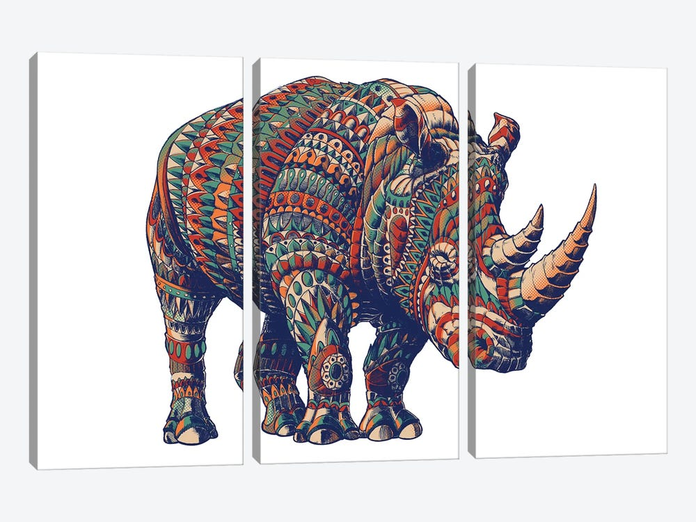 Rhino In Color III by Bioworkz 3-piece Canvas Wall Art