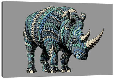 Rhino In Color IV Canvas Art Print
