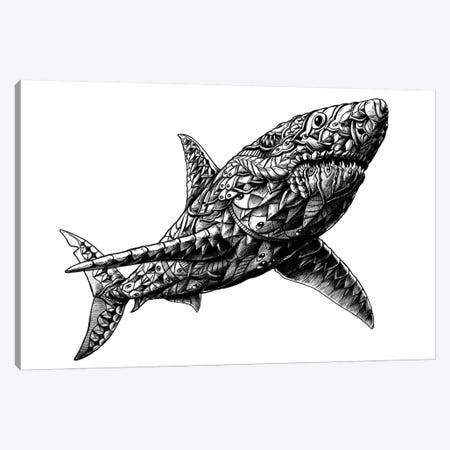 Great White Shark Canvas Print #BWZ10} by Bioworkz Canvas Artwork