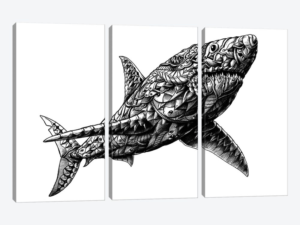 Great White Shark by Bioworkz 3-piece Canvas Wall Art
